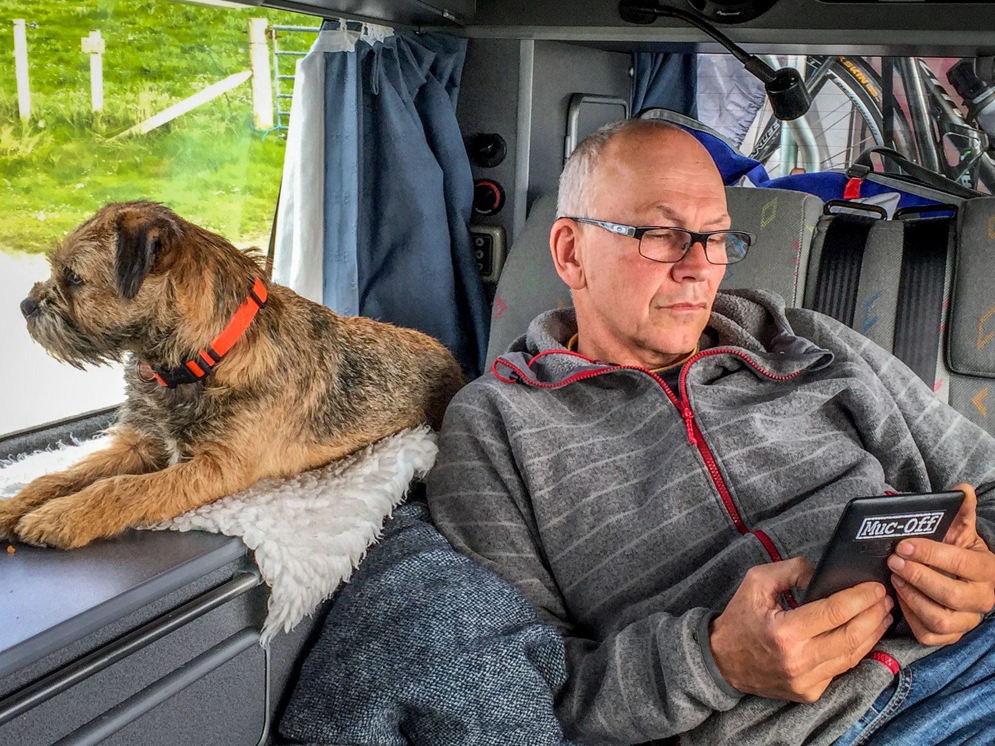 campervan dogs